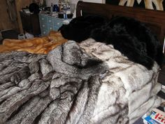 Fur Bedding, Ready For Love, Furniture Board, Fur Accessories, Fur Blanket, Soft Blankets, Fox Fur, Dream Bedroom, Bed Spreads