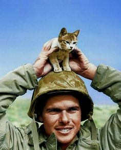 A US Marine belonging to the Marine Division, shows off his new feline frien… – All Pictures War Novels, All Pictures, Division, World War, History, Fictional Characters, Art, Art Background, Historia