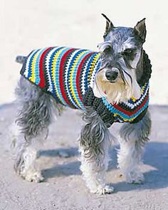 Ravelry: Striped Dog Coat pattern by Bernat Design Studio.  Next project!  Addie will look so cute!