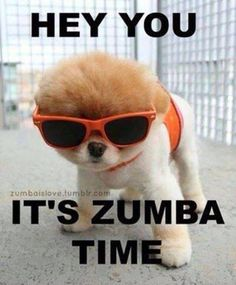 Hey You, It's Zumba Time!