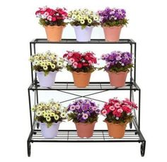 Solid 5 Pots Metal Plant Stand Flower Pots Plants Care Holder Garden Balcony Dec