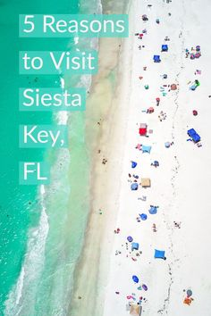 Best Beach in America Siesta Key Florida. Beautiful white sand beach with tons of shops and restaurants surrounding it making it perfect for your next family vacation Travel Tips Tips Travel Guide Hacks packing tour Clearwater Florida, Florida Keys, Orlando Florida, Siesta Key Florida, Siesta Key Beach, Sarasota Florida, Florida Vacation, Florida Travel, Florida Beaches