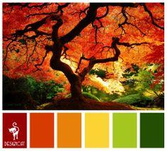 Autumn 4: Red, Terracotta, Orange, Yellow, Green - Colour Inspiration Pallet