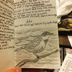 """Speak to me love! The night is dark./ The stars are lost in clouds my lark!"" Another piece of art based on my practice book from #CanterburyTales. Day 236/365.  #ayearofart #365daysofart #dailyart #MyArt #art #instaart #artstagram #doodle #drawing #sketchbook #blackandwhite #pencil #pencilsketch #pencildrawing #pencilart #lark #bird #clouds #bird"