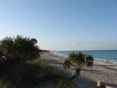 Casperson Beach Venice Florida  My favorite place, as of now this is where we will retire if we choose the beach.