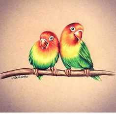 Love bird painting colored pencils Ideas for 2019 Colour Pencil Shading, Color Pencil Sketch, Shading Drawing, Pencil Sketch Drawing, Pencil Art Drawings, Animal Drawings, Love Birds Drawing, Love Birds Painting, Colored Pencil Artwork