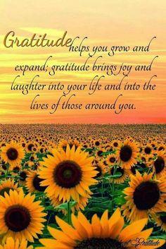 expand gratitude
