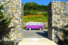 Destination: Andaz Papagayo Resort Costa Rica
