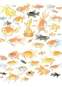 Brigid Lucy Wants A Pet - Tamsin Ainslie Illustration Fish Illustration, Character Illustration, Fish Drawings, Art Drawings, Animal Art Projects, Cute Fish, Fish Art, Goldfish, Just In Case