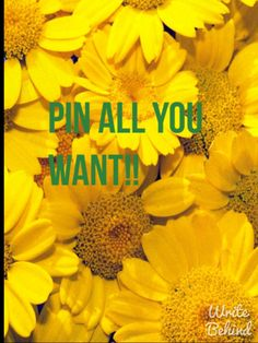 Welcome Friends!!! There are NO PIN LIMITS here. I just want you to have fun! -