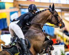 Billdal Horse Show 2016 - Volkswagen Grand Prix, hästar, hästsport, rida, tävla