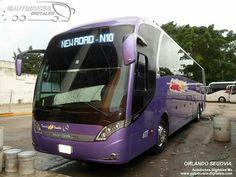 Neobus New road 380 turismo en ómnibus México