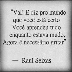http://letras.mus.br/raul-seixas/48315/
