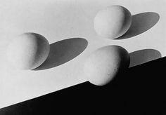 Aenne Biermann, Eggs (1932) *contrasto bianco nero, linea che attraversa l'uovo*