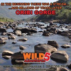 Oribi Gorge's humble beginning Amazing Photography, Waterfall, Around The Worlds, Activities, Adventure, History, Movie Posters, Outdoor, Instagram