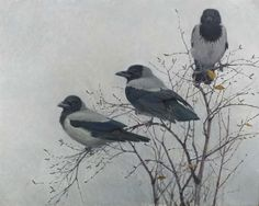 The Hooded Crow is found across Northern, Eastern and Southeastern Europe, as well as parts of the Middle East.