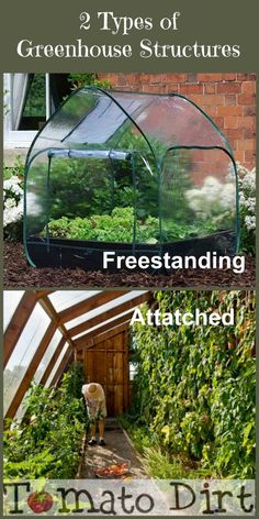 66 best Tomato greenhouses images on Pinterest in 2018 | Grow ... Bat Greenhouse Design Html on