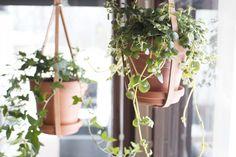 Easy DIY plant hanger from leather Plant Hanger, Lifestyle Blog, Diy Ideas, Easy Diy, Planter Pots, Leather, Ebay, Craft Ideas