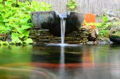 Custom Fountains are very popular. I love this spillway bowl fountain. Pond, Fountain, Patio, Popular, Water Pond, Water Fountains, Popular Pins, Garden Ponds, Terrace