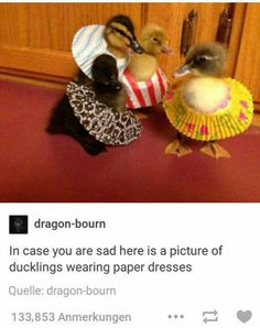 those ducklings are wearing cupcake wrappers as skirts!!!<<< no THEY ARE PAPER DRESSES