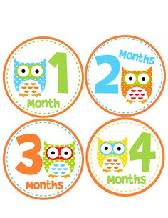 Monthly Onesie Stickers for New Mom, Baby Girl or Baby Boy...Bright  Funky Owls...Baby Shower Gift. $9.00, via Etsy.