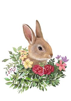 Woodland Splendour animals on Behance Watercolor Cards, Watercolor Paintings, Ostern Wallpaper, Lapin Art, Easter Illustration, Easter Pictures, Rabbit Art, Bunny Art, Easter Printables