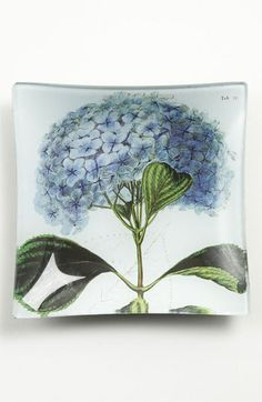 Ben's Garden 'Blue Hydrangea' Trinket Tray available at #Nordstrom