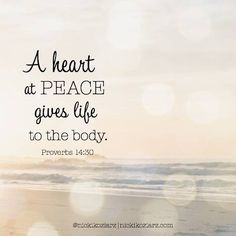 """""""A heart at peace gives life to the body."""" ~Proverbs 14:30   What can you change in your schedule or eliminate from your to-do list to bring peace to your heart and give life to your body?   #Scripture #Bible (@nickikoziarz graphic)"""