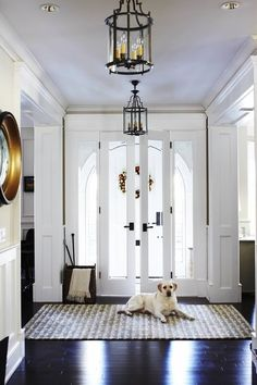 ..LOVING THIS STUNNING HALLWAY IN ALL WHITE, WITH BLACK FLOORING & STUNNING RUG NEAR THE DOOR! - THE LIGHTING IS GLORIOUS, HOWEVER, A QUESTION!! - DOES THE FURBABY COME WITH!! #️⃣
