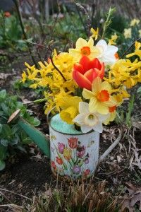 Vintage Child's Watering Can with Spring Flowers