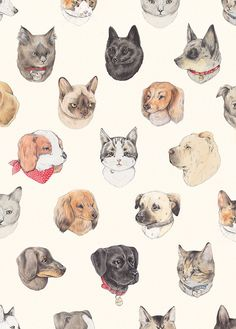 {Pet Portraits} cats and dogs in this pattern by Sarah McNeil Art And Illustration, Pattern Illustration, Illustrations Posters, Wow Art, Pattern Art, Surface Pattern, Background Patterns, Pet Portraits, Dog Cat