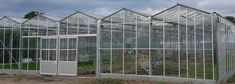 We've just recently completed this 1,100 square metre used glasshouse for Townfield Nursery, Knutsford. The new glasshouse is a double venlo with 4m sections, aluminium gutters & amp; 3m post height. The glasshouse replaced polytunnels and joins onto a double venlo glasshouse of the same height with steel gutters & 3m section lengths. Glass House, Greenhouses, My Dream, Acre, Nursery, Steel, House Of Glass, Green Houses, Baby Room