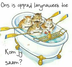 Weekend Messages, Afrikaans Language, Goeie More, Happy Weekend, Daily Quotes, Disney Characters, Fictional Characters, Humor, Funny