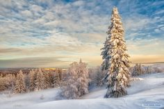 Beautiful Winter In Russia Photography By: Vladimir Chuprikov - perfect winter