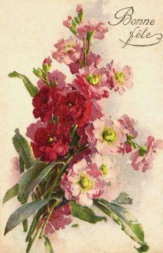 БУКЕТ Vintage Love, Vintage Flowers, Vintage Prints, Vintage Floral, Vintage Art, Catherine Klein, Decoupage Art, Watercolor Flowers, Watercolor Pencils