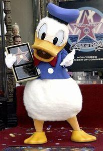 Donald Duck Classic Top Femme Gris chin/é