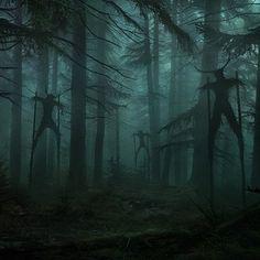 Fantasy Forest, Forest Art, Dark Forest, Dark Fantasy Art, Fantasy World, Dark Green Aesthetic, Witch Aesthetic, Nature Aesthetic, Arte Horror