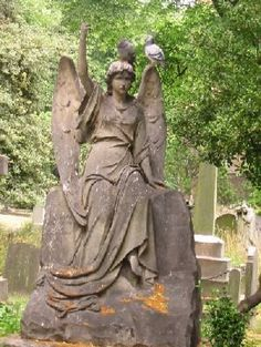 Brompton Cemetery in London. Next door to the home of Chelsea Football Club's Stamford Bridge is the victorian cemetery full of stone statues of angels and other beautiful things. I try to get a walk through it every time I am in London.