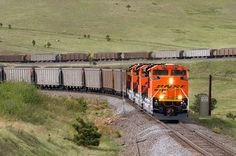 https://flic.kr/p/F2dvEu | New Aces at 22.6 | An eastbound BNSF coal train descends around the mouth of Coal Creek Canyon east of Plainview, Colorado, on May 5, 2014. Three brand-new EMD SD70ACes lead the train (Nos. 8533, 8531 and 8530) past the 22.6 detector on Union Pacific's Moffat Tunnel Subdivision.
