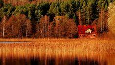 20 мест, где осень невероятно прекрасна   Korysno.PRO