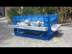 Клетка для перепелов бесплатно, за 35 минут. cell for quail - YouTube