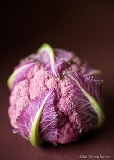 Purple Cauliflower by Beata Bernina Purple Food, Green And Purple, Purple Cauliflower, Beautiful Fruits, Exotic Fruit, All Things Purple, Fruit And Veg, Fruits And Vegetables, Food Photography