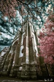 gabor-kovacs-infrared-gallery-13 Infrared Photography, Photography Gallery