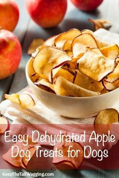 Easy Dehydrated Apple Dog Treats for Dogs