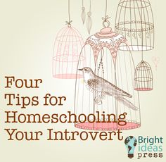 Four Tips for Homeschooling Your Introvert - Guest post by Sallie Borrink at Bright Ideas Press