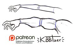 Arm sizes reference sheet -PREVIEW-   kibbitzer on Patreon