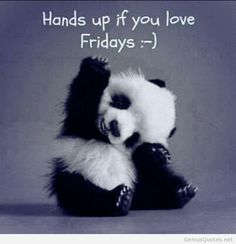Hands up if you love Friday quotes