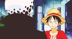 Luffy and Law. This sums up the dynamic nicely.