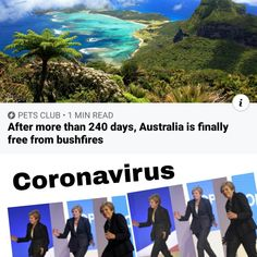 30 Memes Roasting Inconsiderate People Who Catch Cheap Flights During Coronavirus Outbreak - funny photo hilarious Really Funny Memes, Stupid Funny Memes, Funny Relatable Memes, Funny Posts, Fuuny Memes, Fun Funny, Memes Humor, True Memes, Humour Quotes