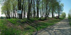 Cmentarz ewangelicki w Borkowiźnie